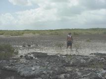 Crossing the Swamps