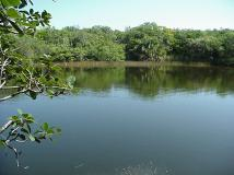 Nanny Pond